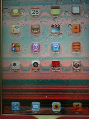 Ipad 2 bị lỗi màn hình